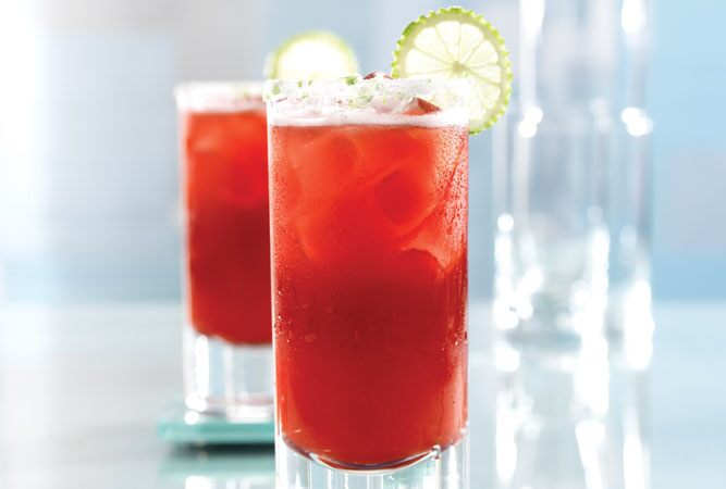 Alcohol-Free Cran-Raspberry Fizz