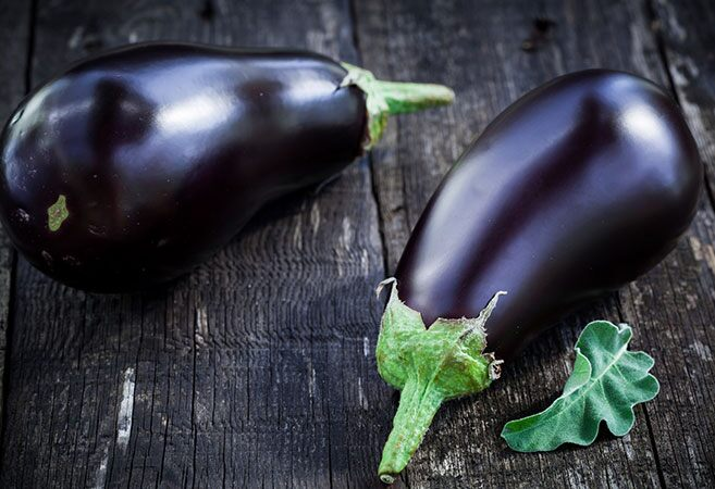 when to harvest eggplant