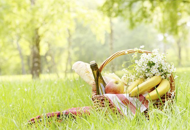 best picnic ideas