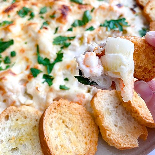 The Best Bubbly Cheesy Shrimp Dip