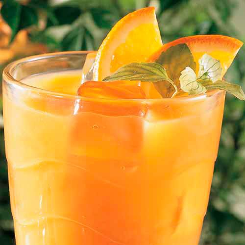 Spiced Tropical Tea Cooler
